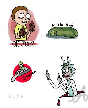 RICK AND MORTY FLASHS